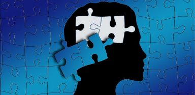 A graphic of puzzle pieces and a person's head.